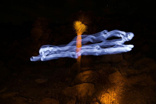 Leandro Sanchez Light Paints Surreal Spirits In Desert Landscapes