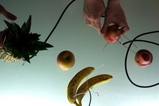 Natura Morta: Making Electronic Music With Fruit