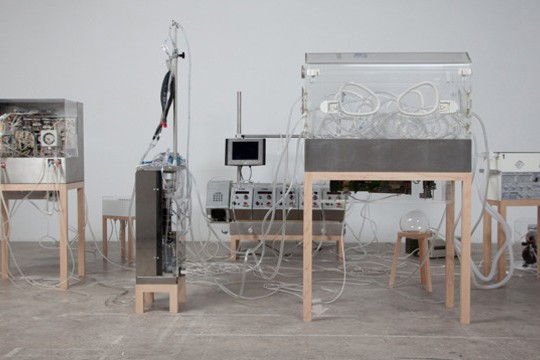 The Immortal Imitates Biological Structures Using Hospital Equipment