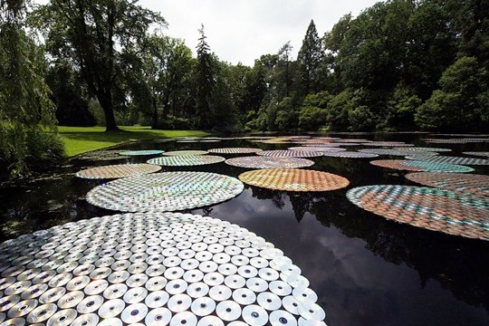 65,000 CDs Create Memorial Disco Lilypads