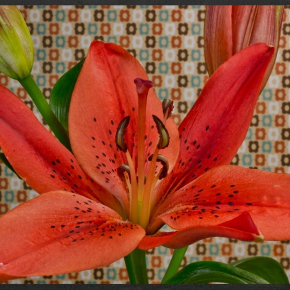 Articoli taggati fiori page 1 the creators project for Fiori che sbocciano