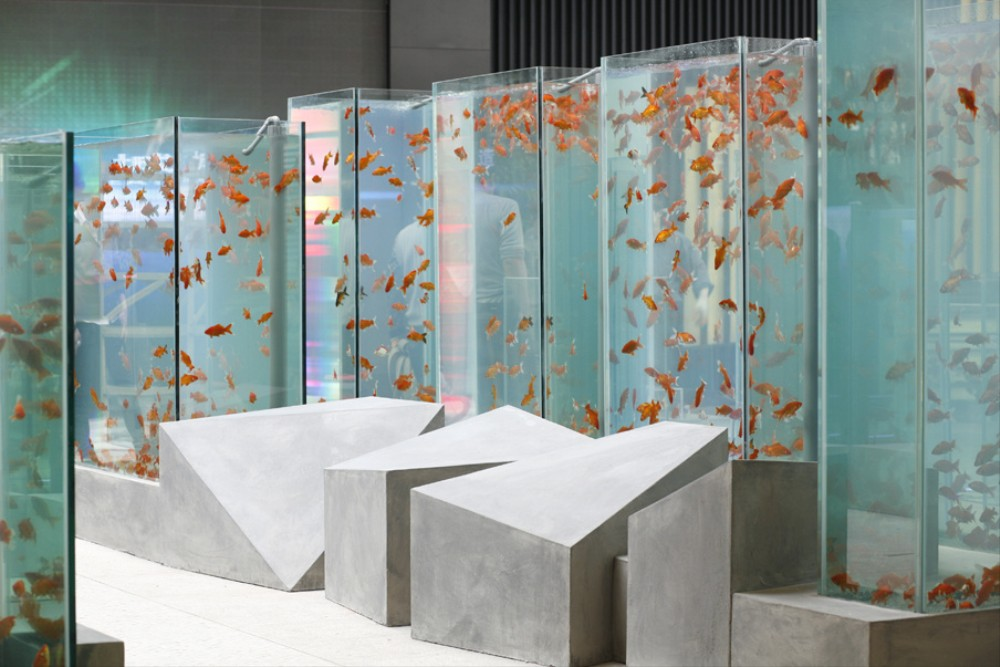 This is what a chinese city looks like inside a fish tank for Fish pond installation