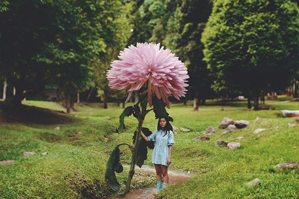 Nature Self-Portraits Take A Page Out Of Lewis Carroll And Miyazaki