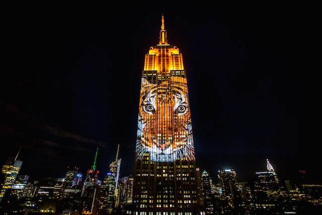 inspiration-empire-state-building-projecting-change