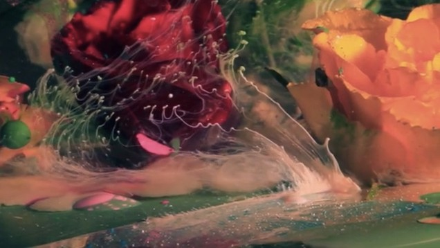 Watch Liquids and Flowers Dance Inside a Fishbowl